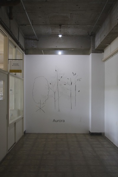 Aurora at IID GALLERY